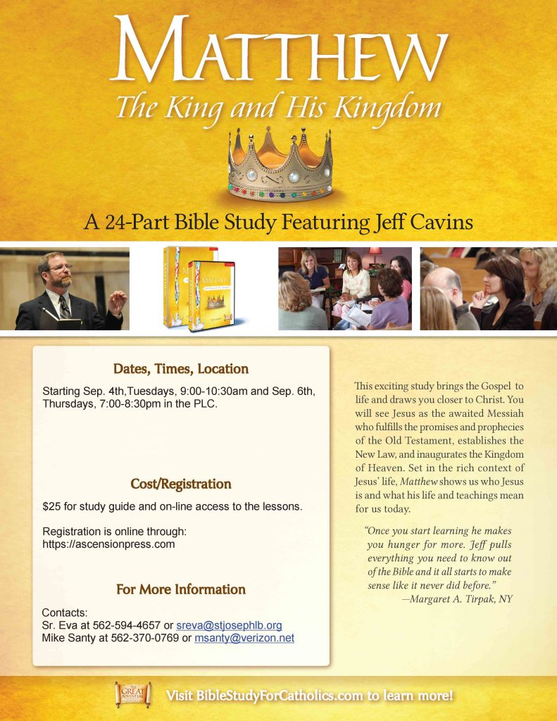 Matthew: The King and His Kingdom is a Catholic Bible study that brings the  history of Christ to life through Matthew's Gospel.